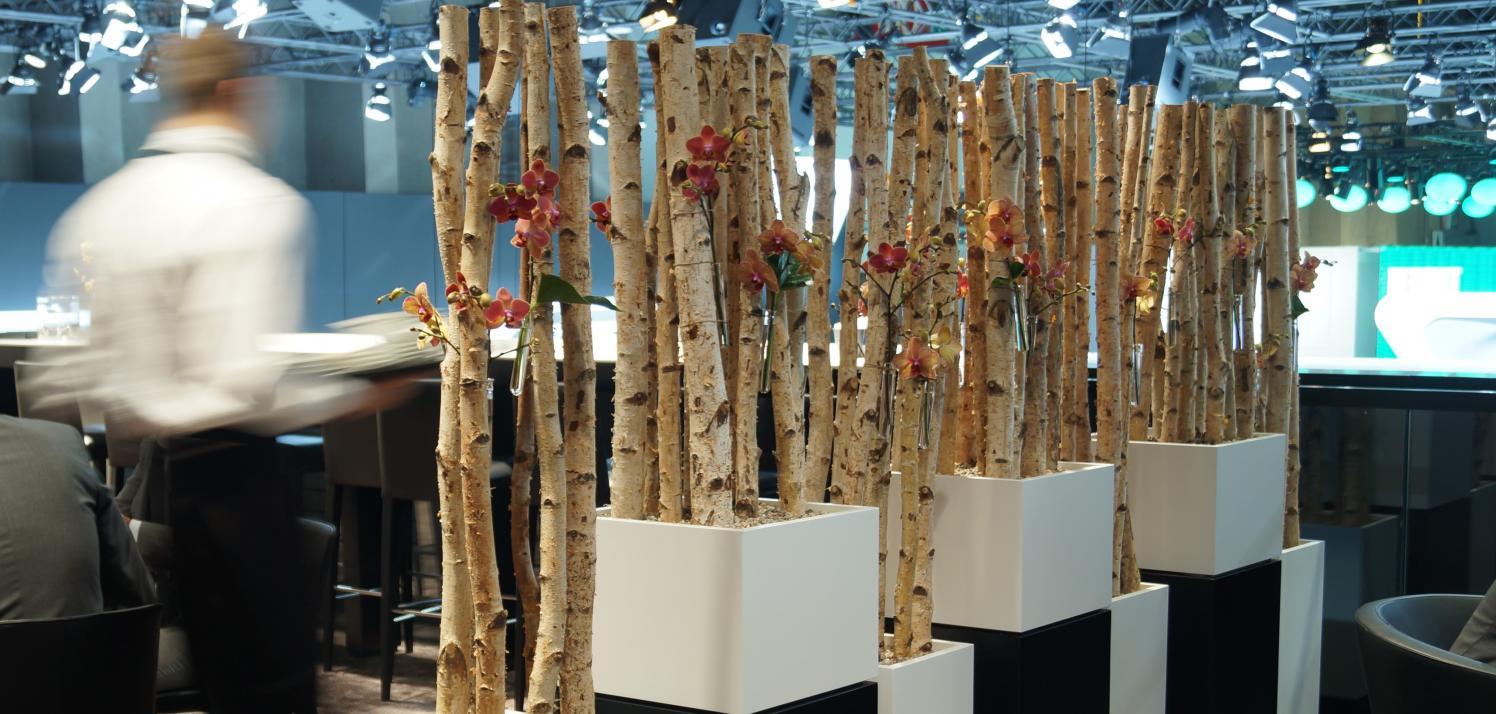 Blog van plant axis plant axis - Decoratie eetzaal ...